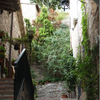 Weiterlesen: Assisi